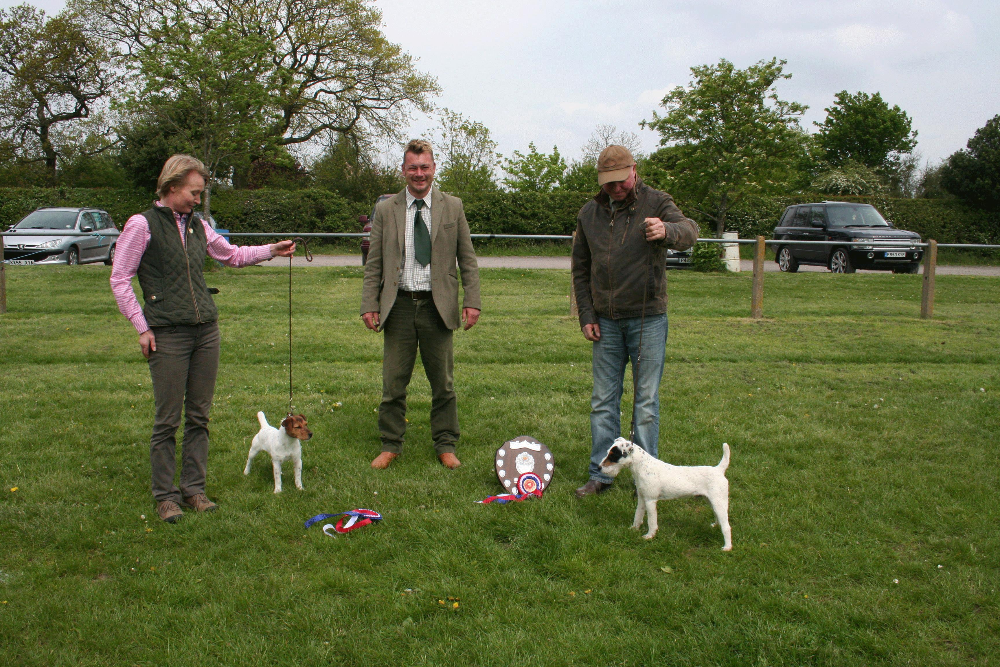 Reserve Best Puppy, Meynell-Sundance Wales, G Mousley & A Makela Champion Puppy, Foxgrove Barney, Steve Parkin Judge Nick Hazeltine