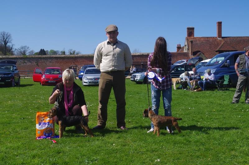 Champion & Reserve Coloured Puppy