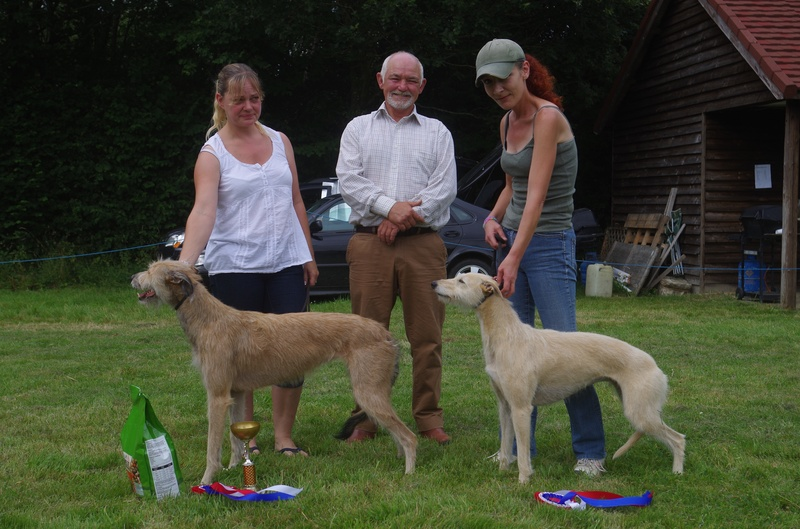 Champion & Reserve Lurcher