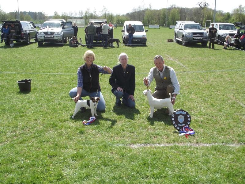 Champion - Harry - Mr Jones, Reserve - Cadella Bonnie - J. Massarella