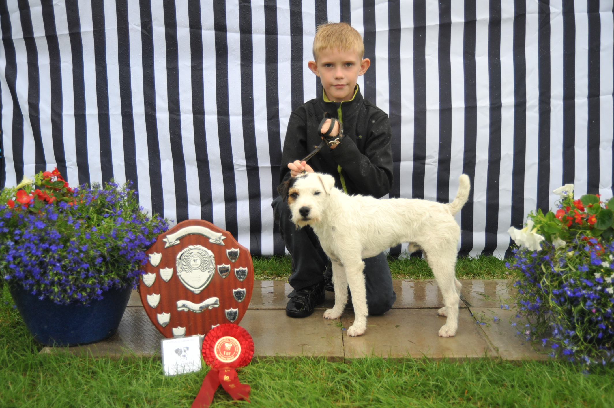 Class 17 Junior Child Handler | Thomas Dalton - Topdraw Dennis