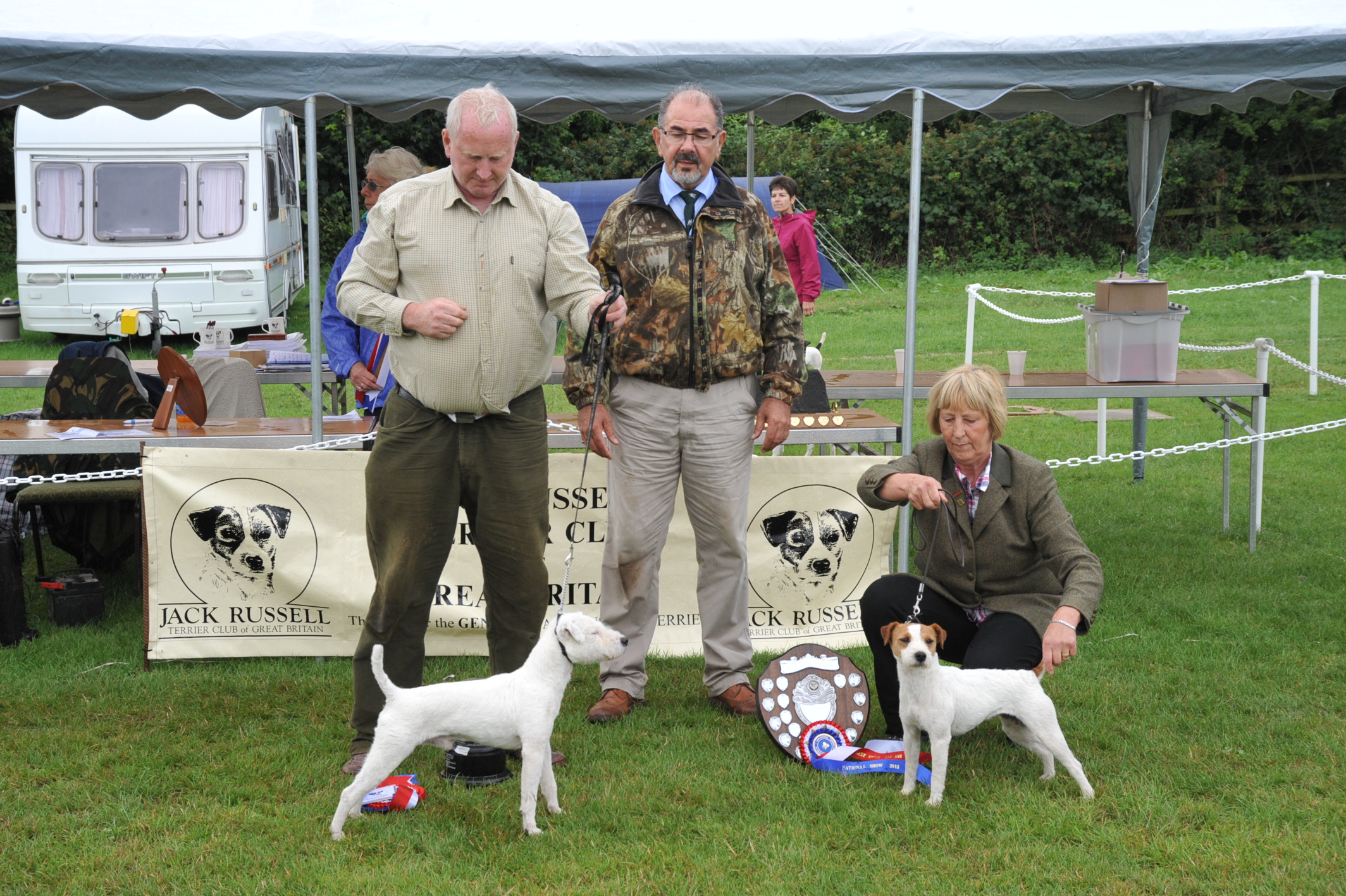 "Best 12 1/2""-15"" Terrier 