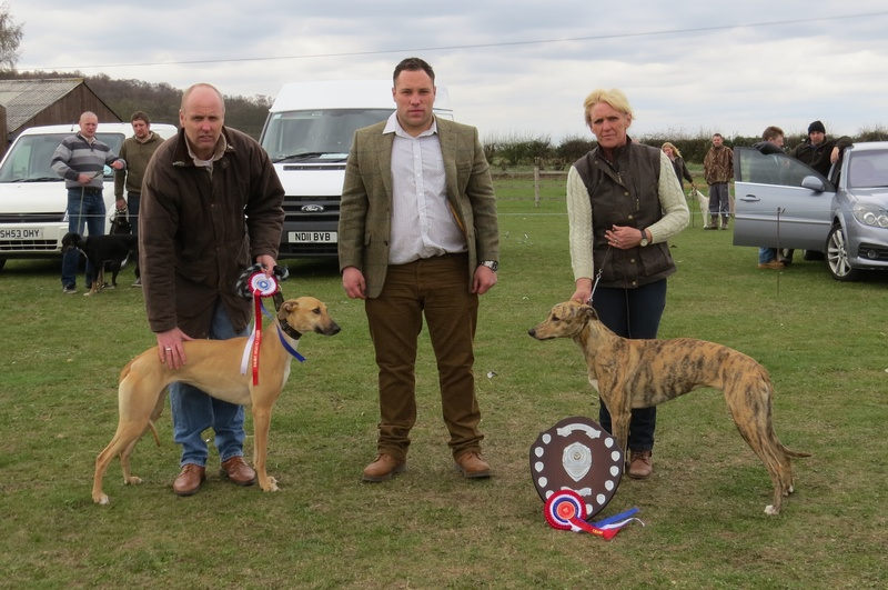 Champion and Reserve Lurcher