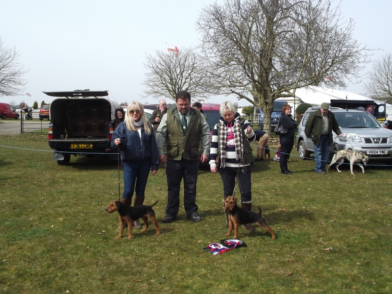 Best Coloured Terrier   Champion - D. Plumtree - Favour Reserve - L. Clews - Banner