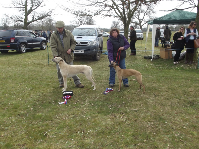 Best in Show | Champion - J. Harris - Syrus Reserve - S. Marks - Cody