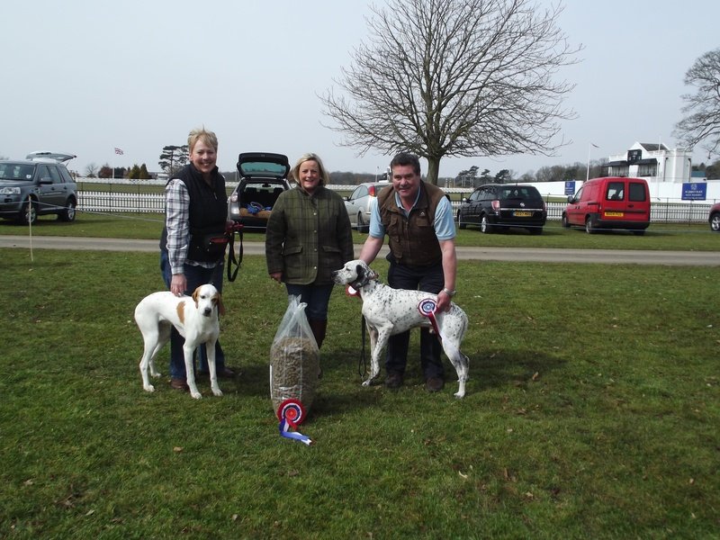 Family Dog Show | Champion and Reserve Brian and Sue Lowe