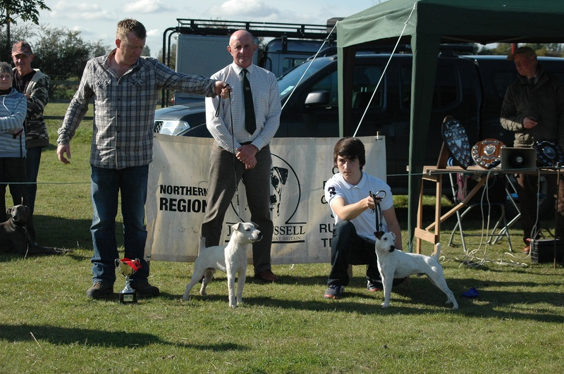 Northern Region Autumn Show 2012