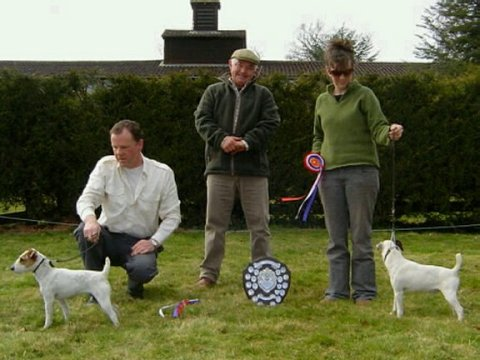 Best Jack Russell (left) and Reserve | Paul Coffey's Marlbrook Ruff & Reserve (right) Steph Allen's Allens Buckle