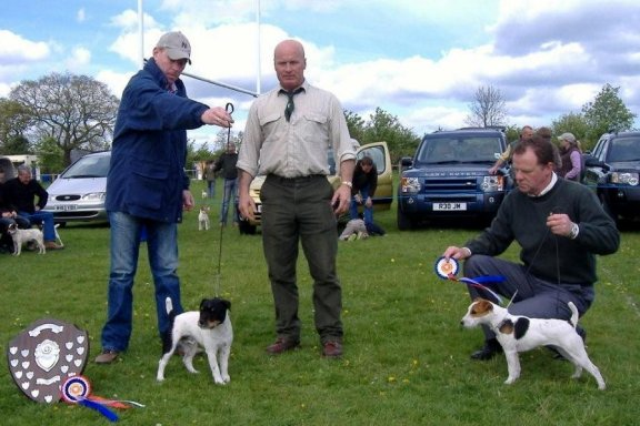 Best Russell Puppy (left) and Reserve | Best Russell Puppy S. Dalton Alfie (left) and Reserve Paul Coffey Spence
