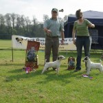 Southern Region Spring Show 2011 | Show Ch & Res