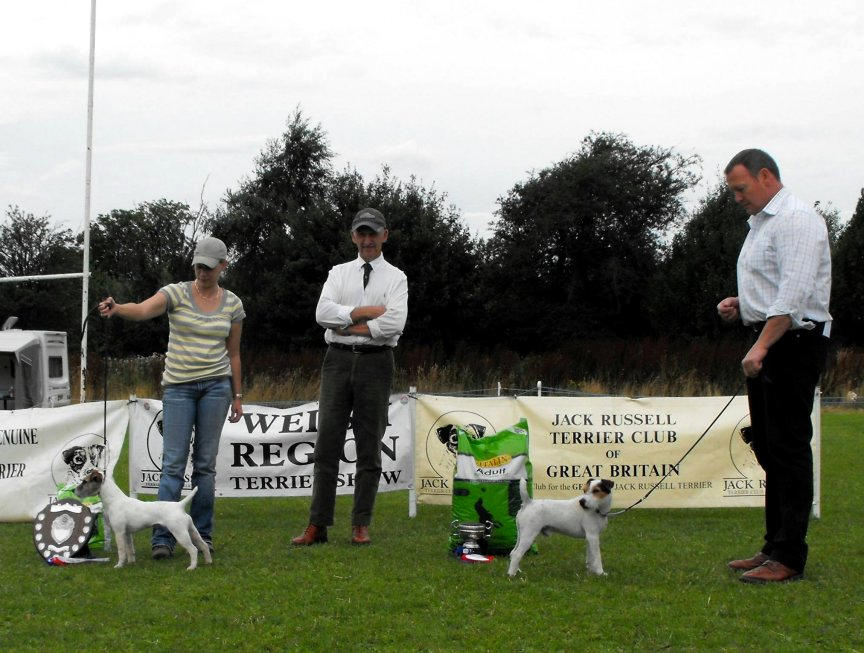 Class 29. Best 12.5-15 ins Terrier |Kevin Allen - Bicester Goblin (right) & Reserve Becky Smith - Radbourne Spook