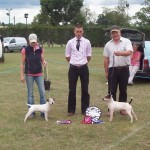 Best in Show | Best - Rushill Dodge, M&E Hulme (right), Reserve - Radbourne Spook, B. Smith