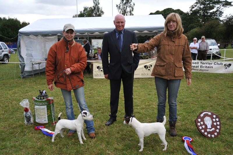 Class 23 Champion Pup | Champion Bicester Sonic of Radbourne - B. Smith (left) & Reserve - Topdraw Bobby - S. Dalton