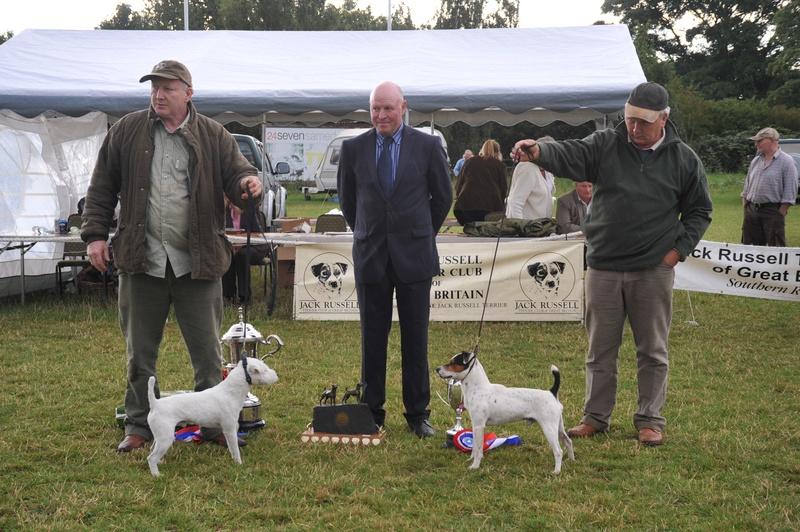 Class 26 Best Jack Russell Terrier in Show | Best Cuchulann Wango - D. Mackin (left) & Reserve Rushill Dodge - M&E Hulme