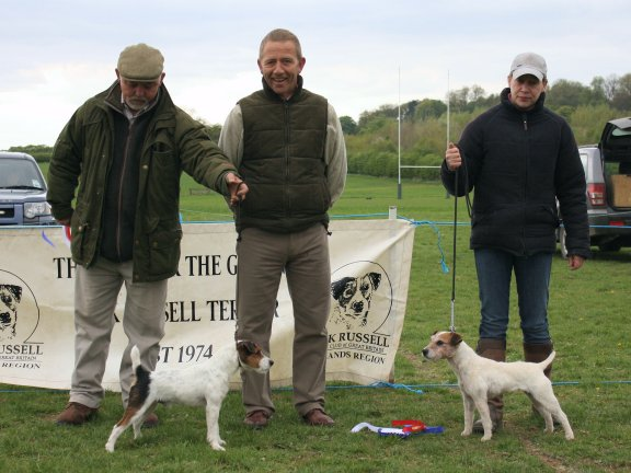 Best Under Jack Russell (Left) and Reserve |