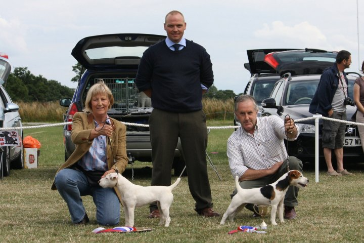 Class 23 Best Puppy | Best Puppy (left) J. Masserella - Cadella Ada and Reserve J. Masserella - Cadella Katy