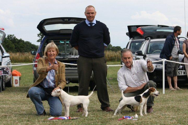 Class 23 Best Puppy   Best Puppy (left) J. Masserella - Cadella Ada and Reserve J. Masserella - Cadella Katy