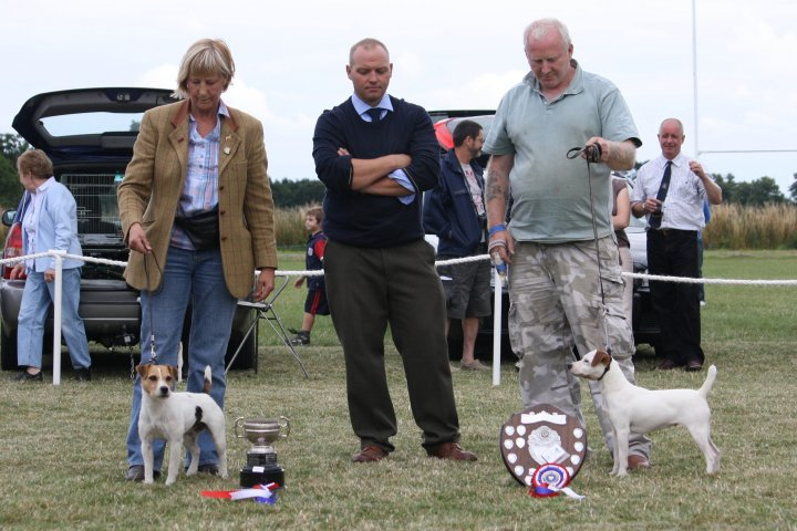 Class 25 Best Over   Best over (left) J. Masserella - Cadella Olive and Reserve D. Mackin - Bicester Tac of Rushill