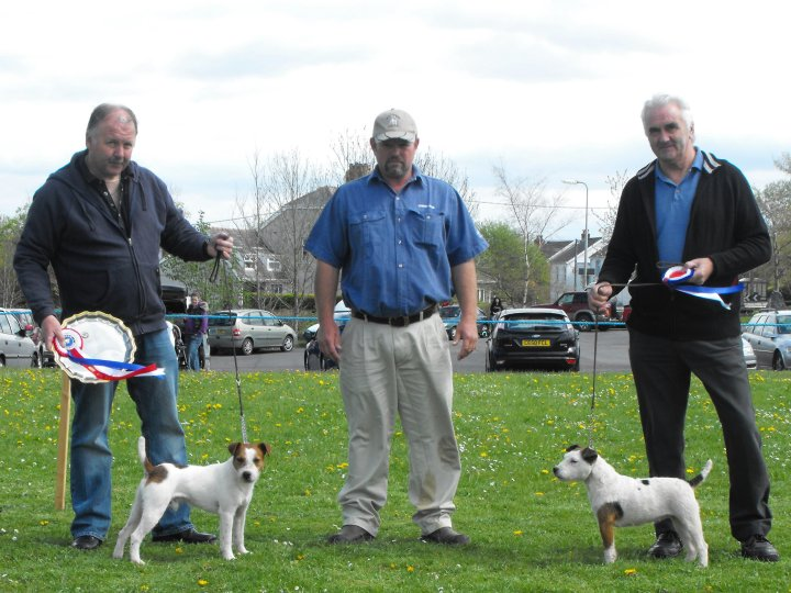 Best Over Jack Russell (left) and Reserve |