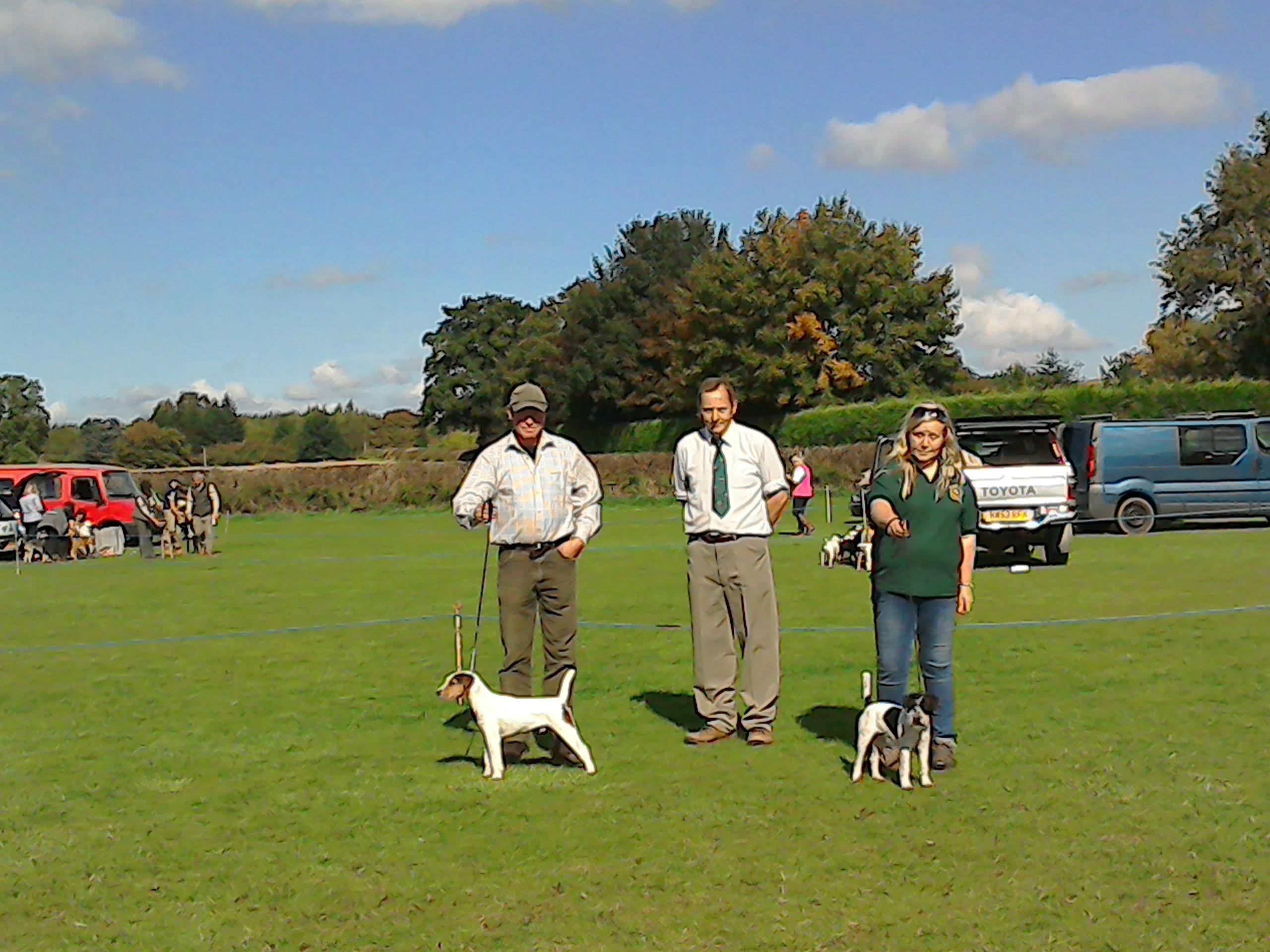 Best Puppy Wentdale Dexter II  - Steve Parkin (left) Reserve Brendon Pixel - Francesca Burrows