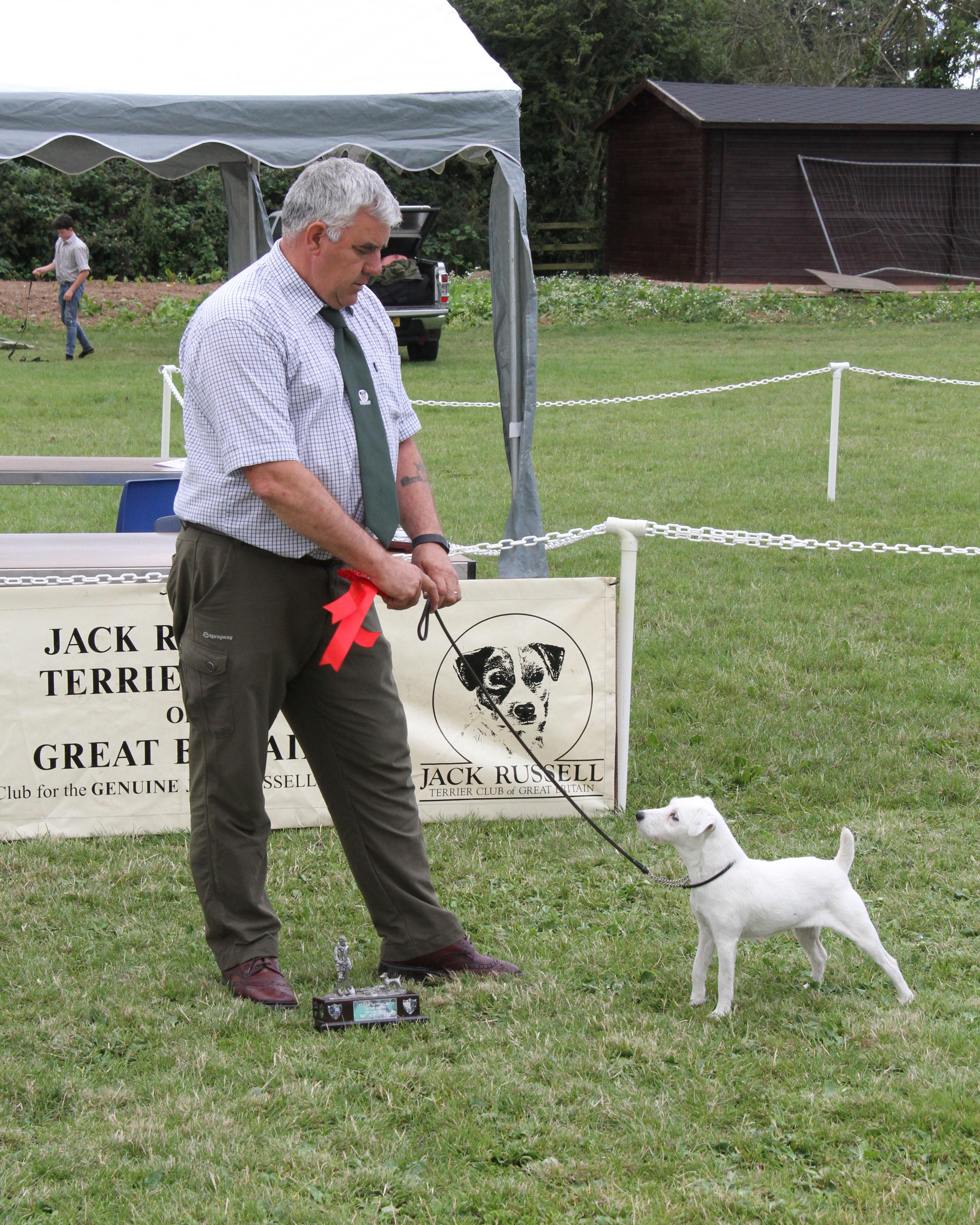 Class 25. Veteran Terrier. Megan of Montrave. Derek Davidson.